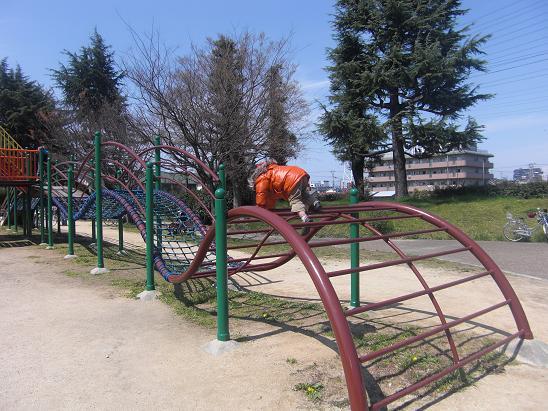 100330・大泉緑地公園など 010