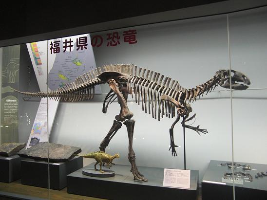 100729-30・福井勝山恐竜旅行 025