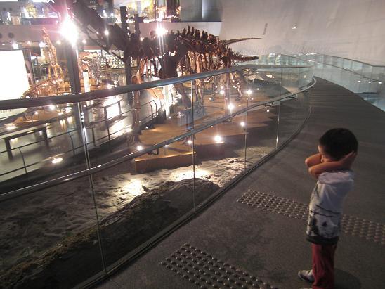 100729-30・福井勝山恐竜旅行 020