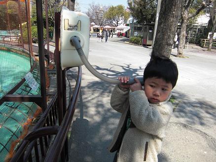 110328・天王寺動物園 003