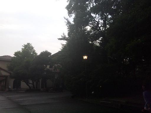 120724 夕方の大学