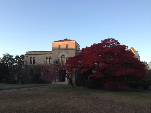 131128 舞子・秋の大学・アサ (2)