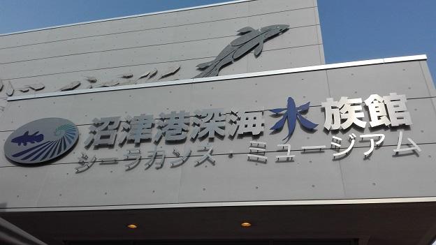 160818 静岡の兄新参 (23)