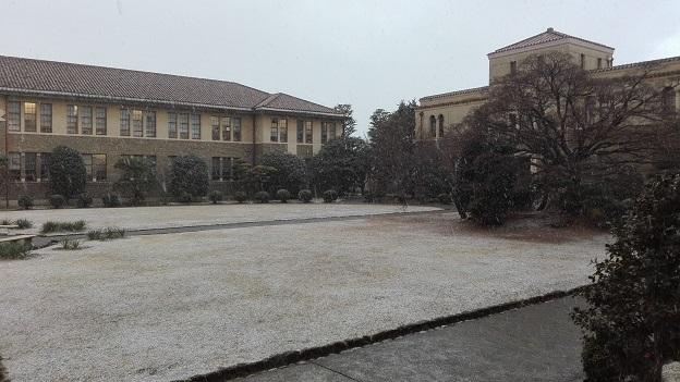 170124 中庭・雪 (1)
