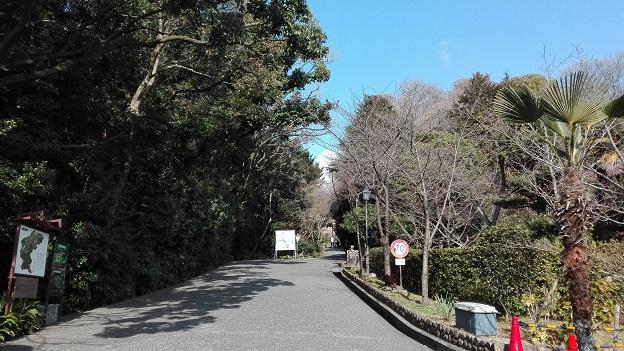 170316 卒業式茶話会 (1)