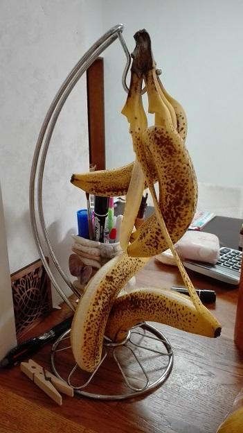 171011 むけるバナナ (1)