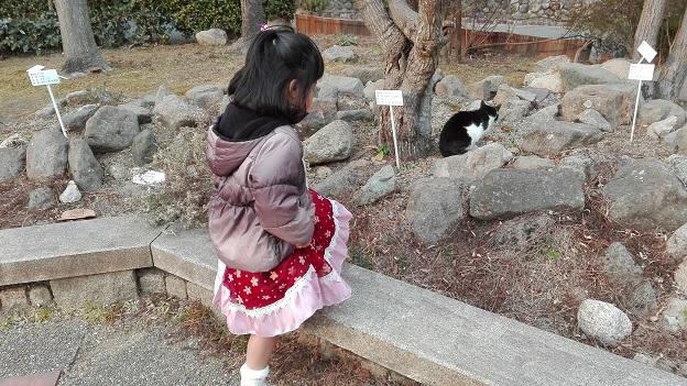 180224 妹新参ピアノ会 (4)