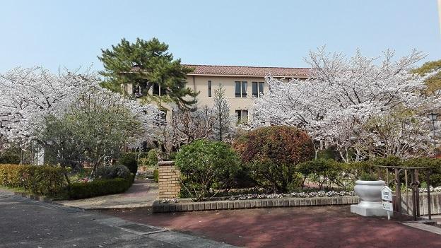 180329 大学 (5)