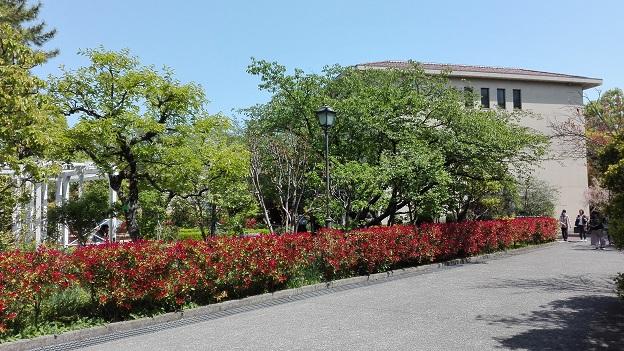180420 大学・妹新参 (5)