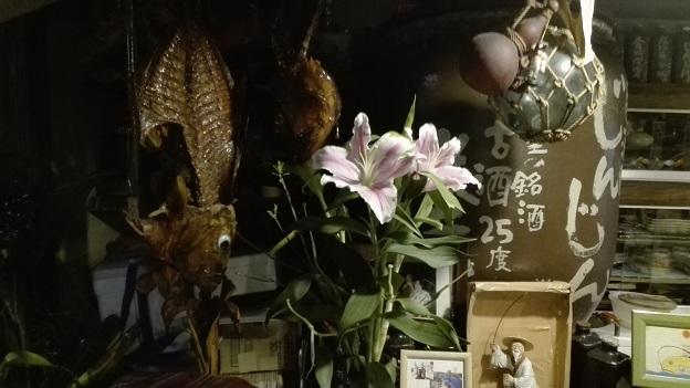 151226 沖縄2日目 (26)