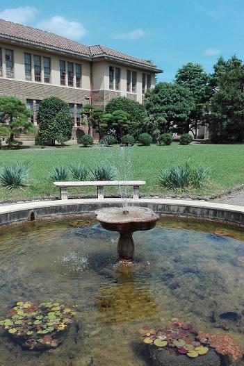160722 夏の中庭 (1)