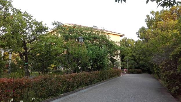 170529 中庭・妹新参 (1)