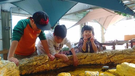 171230 須磨海浜水族園 (6)