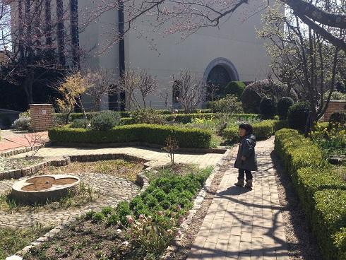 150326 妹新参の中庭・公園 (10)