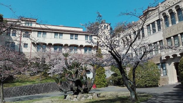 170404 大学桜 (1)