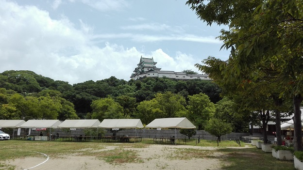 170805 和歌山と淀川花火 (3)