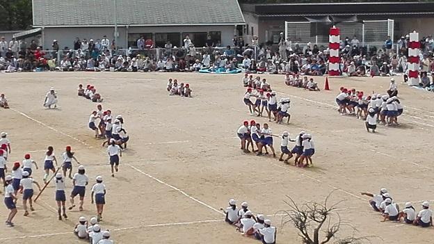 170930 兄新参運動会 (17)