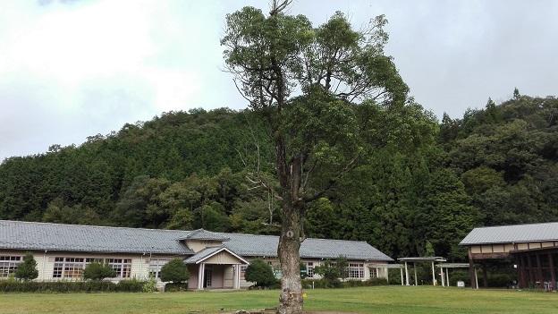 171007 妹新参運動会 (25)
