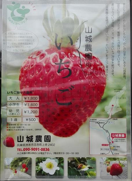 180204 卒業旅行・淡路島2日目 (23)