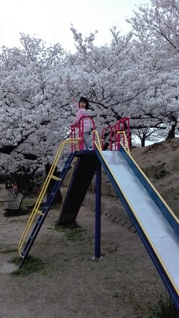 180329 夜桜 (10)
