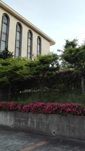 180515 大学 (1)