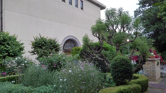 180525 大学 (2)