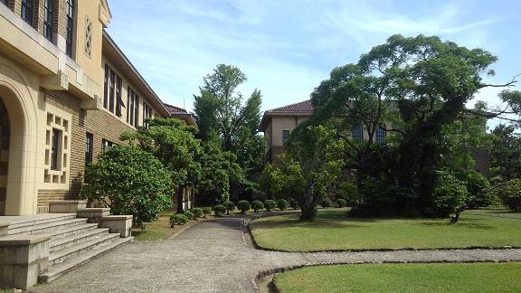 190530 大学 (6)