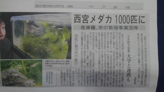 190503 妹新参映画 (3)