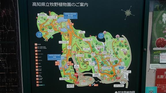 200324-26 高知 (38)