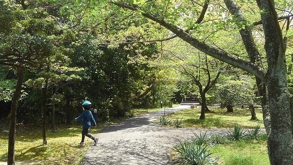 200423 妹新参・大学 (12)