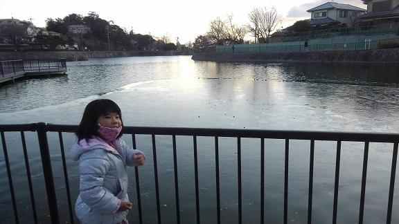 210110 新池の氷 (2)