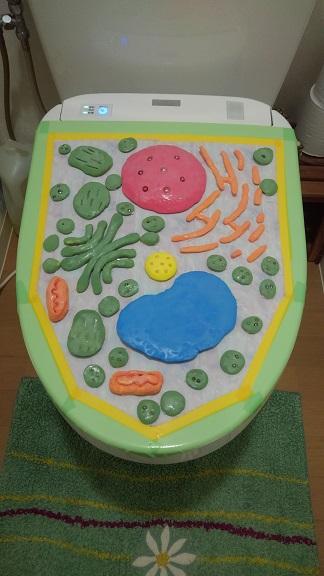 201028 トイレのふた・うどん (5)